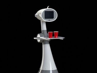 luna un robot domestique a prix abordable blog kelrobot. Black Bedroom Furniture Sets. Home Design Ideas